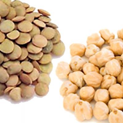 azienda-sensi-legumi