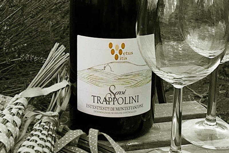 azienda-sensi-vino-trappolini